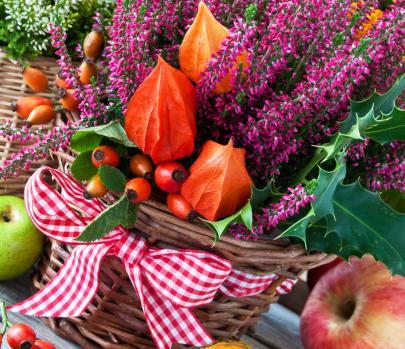 Herbstkorb Balkon